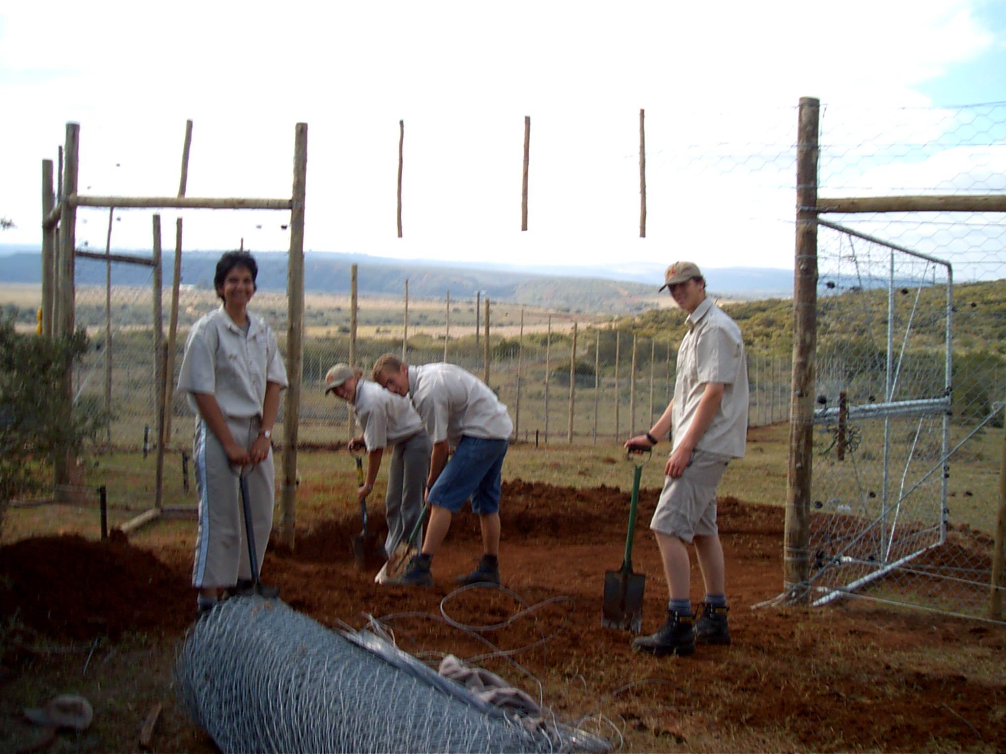 volunteers working hard, digging a boma for the hoedspruit endangered species centre