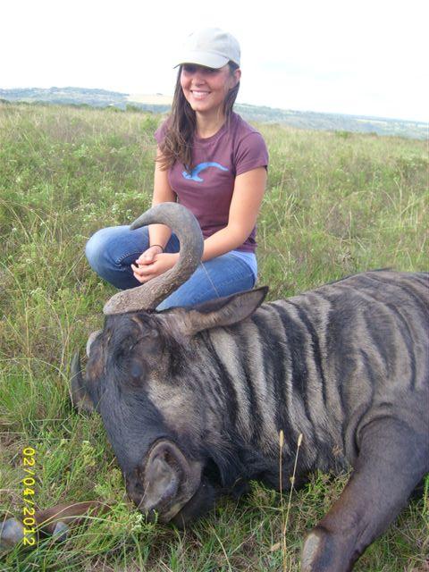 A volunteer looks after a bull at Kariega