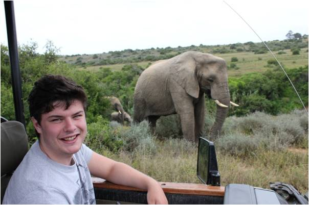 volunteer up close and friendly with a huge elephant