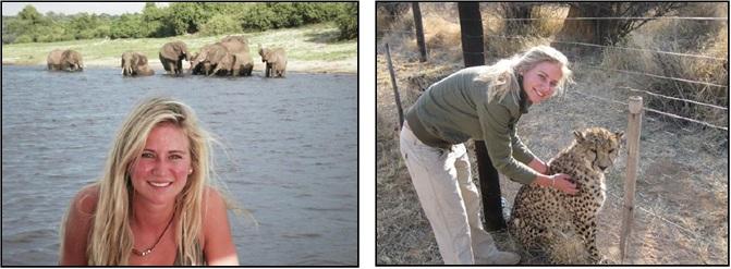 Azel Crous, Kariega's volunteer co-ordinator, plays with a cheetah and elephants watch on