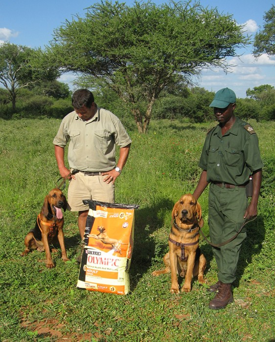 HESC team members with the poaching bloodhound