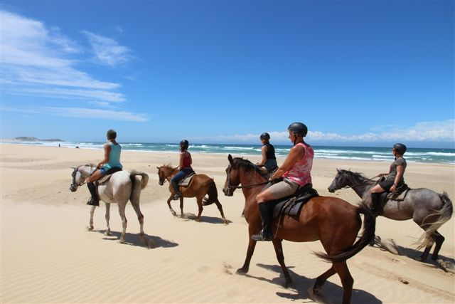 volunteers riding horses across the beautiful South African beach
