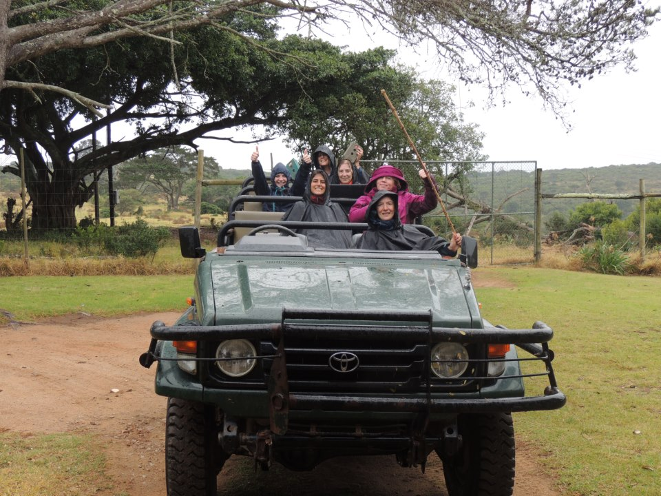 Volunteers on a jeep at the Kariega Game Reserve