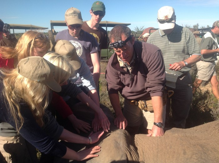 volunteers on a vet eco experience attend to a poorly elephant