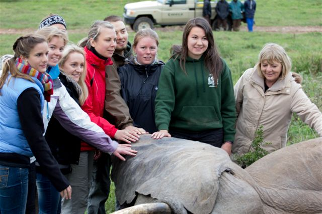 volunteers pose with an elephant at the Kariega Conservation