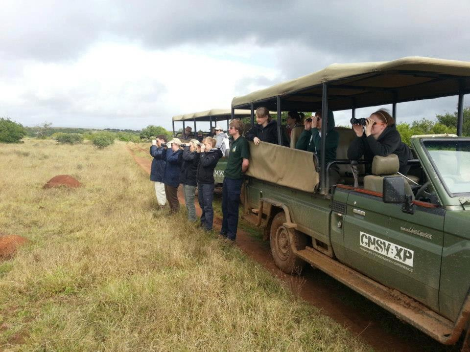 Volunteers with their binoculars out at the Shamwari Conservation Experience