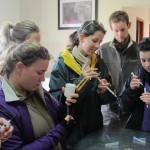 Veterinary volunteers preparing syringes for treatment