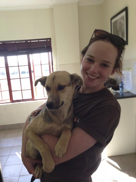 Vet volunteer with local dog