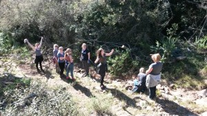 SGS college clearing the road on the Shamwari Conservation Experience
