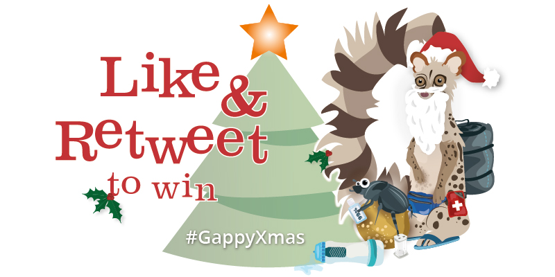 Gap Africa Christmas 2015 competition
