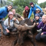 A Gap Africa volunteer team of vet students