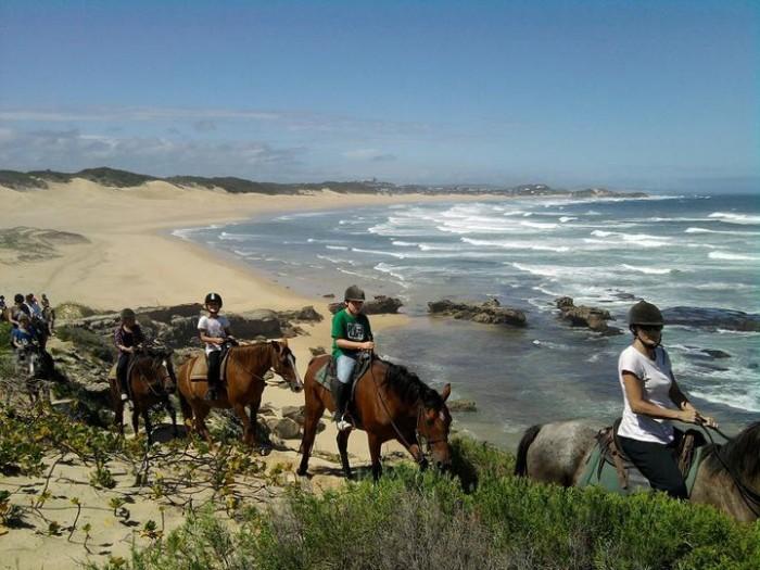 Volunteers riding horses