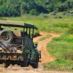 Shamwari Conservation Experience 29