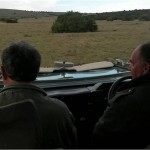 Two vets darting on the Shamwari Game Reserve