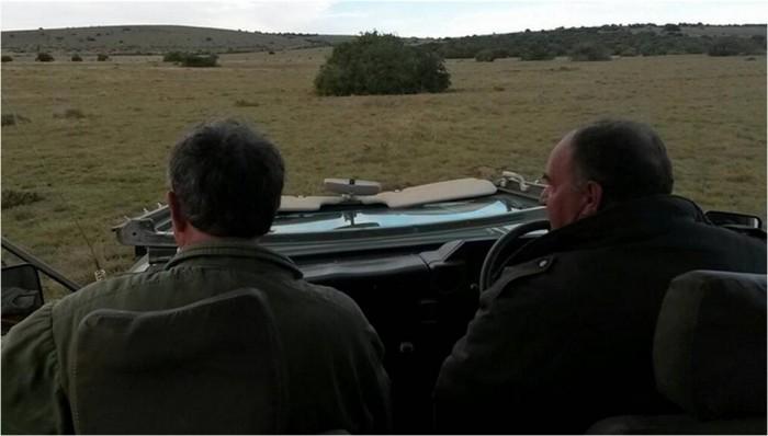 Two vets darting on the Shamwari Game Reserve