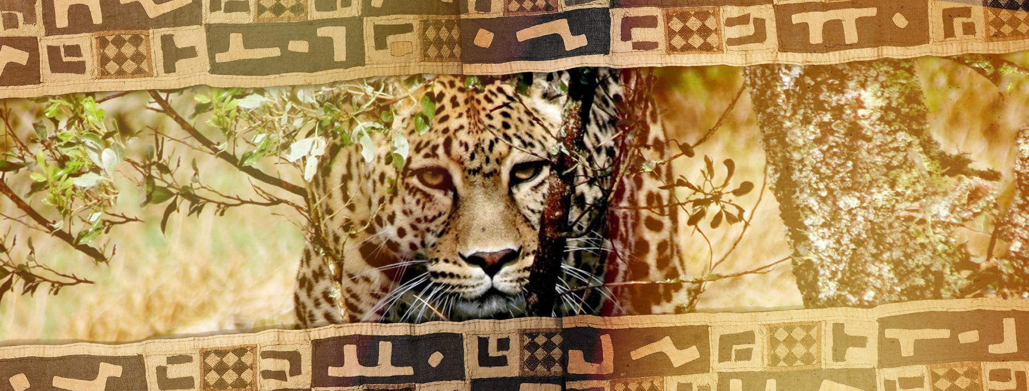 Wildlife banner