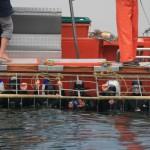 Volunteers in a shark cage get put under water