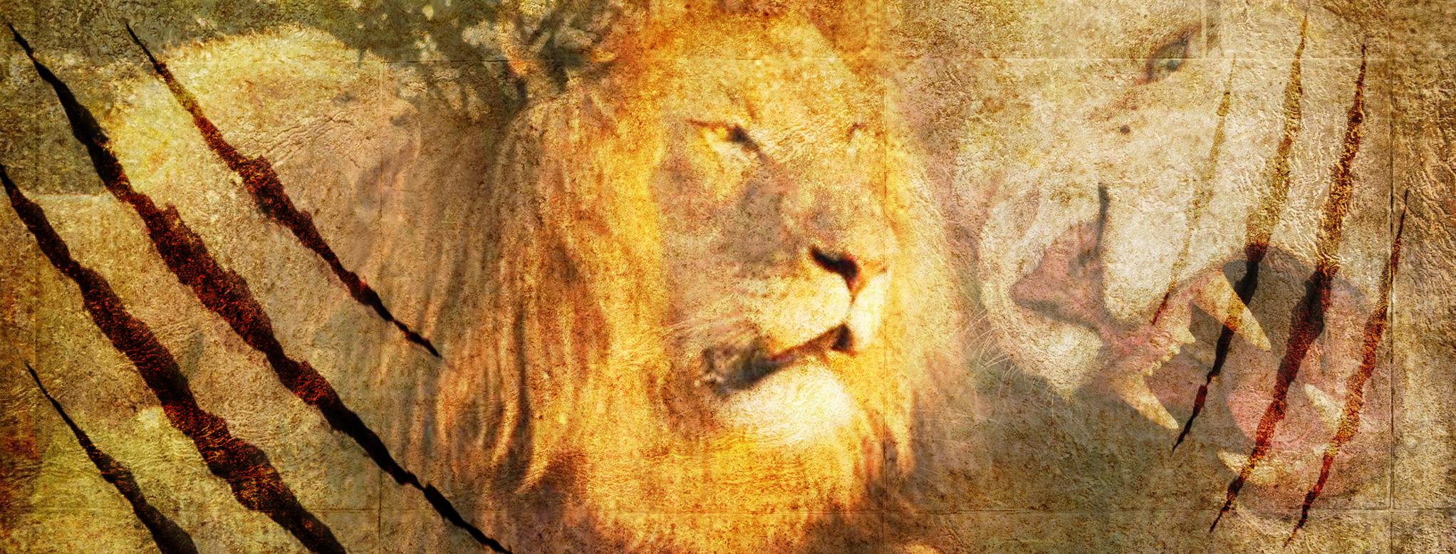 Gap Africa lion banner